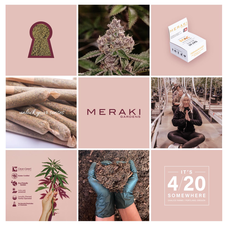 featured-partner-meraki-gardens