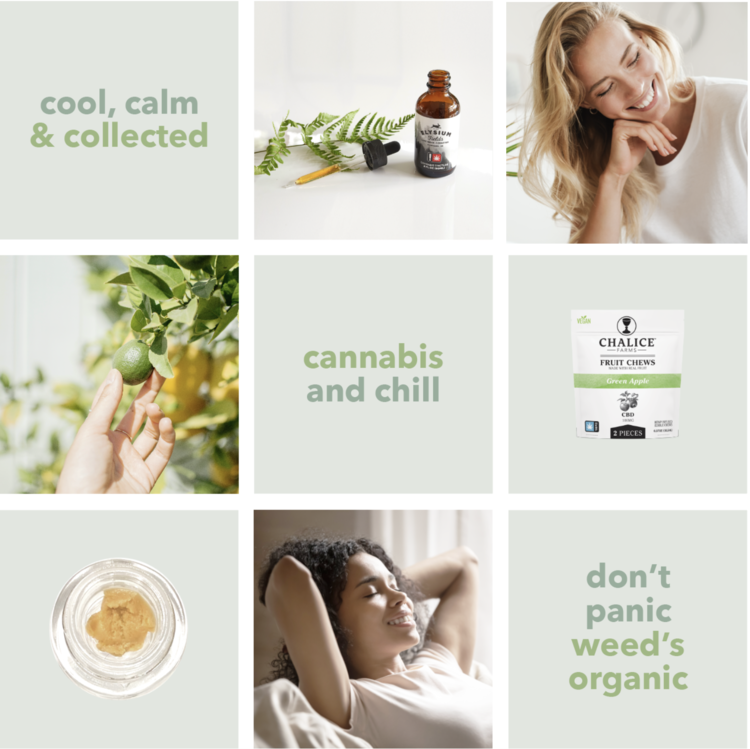 cannabis-and-chill-social-grid